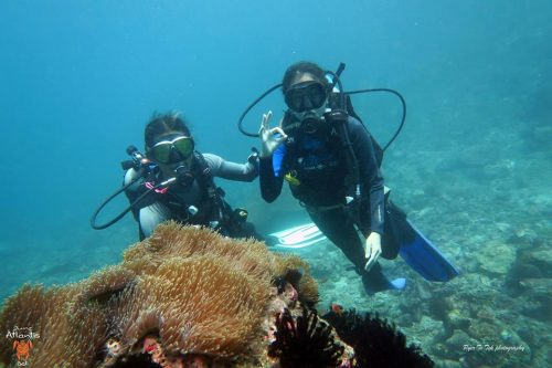 Bali Scuba Diving Packages