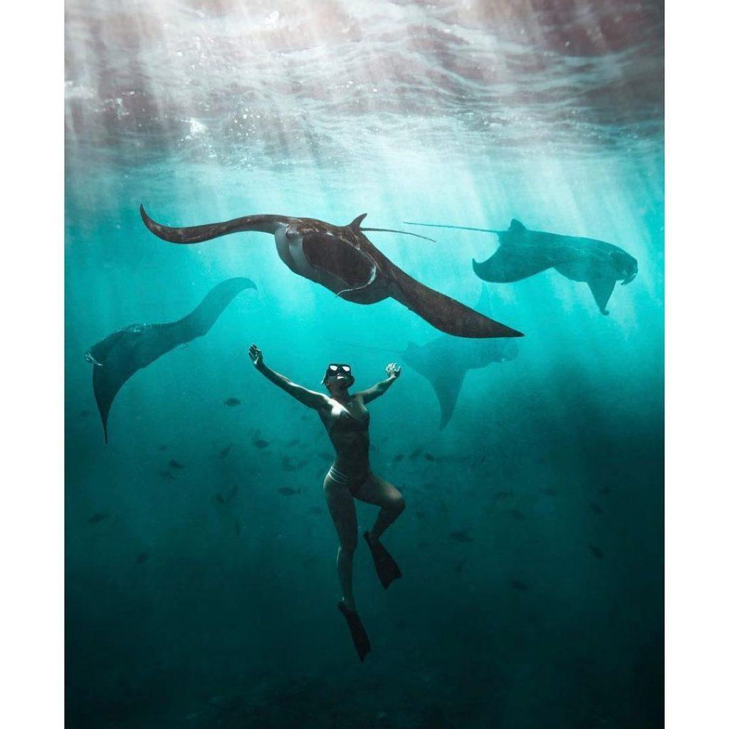 Nusa Penida Snorkeling, Top Tips for Beginners